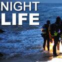 Night-diving